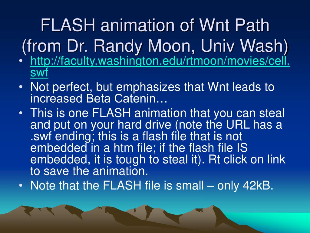FLASH animation of Wnt Path (from Dr. Randy Moon, Univ Wash)