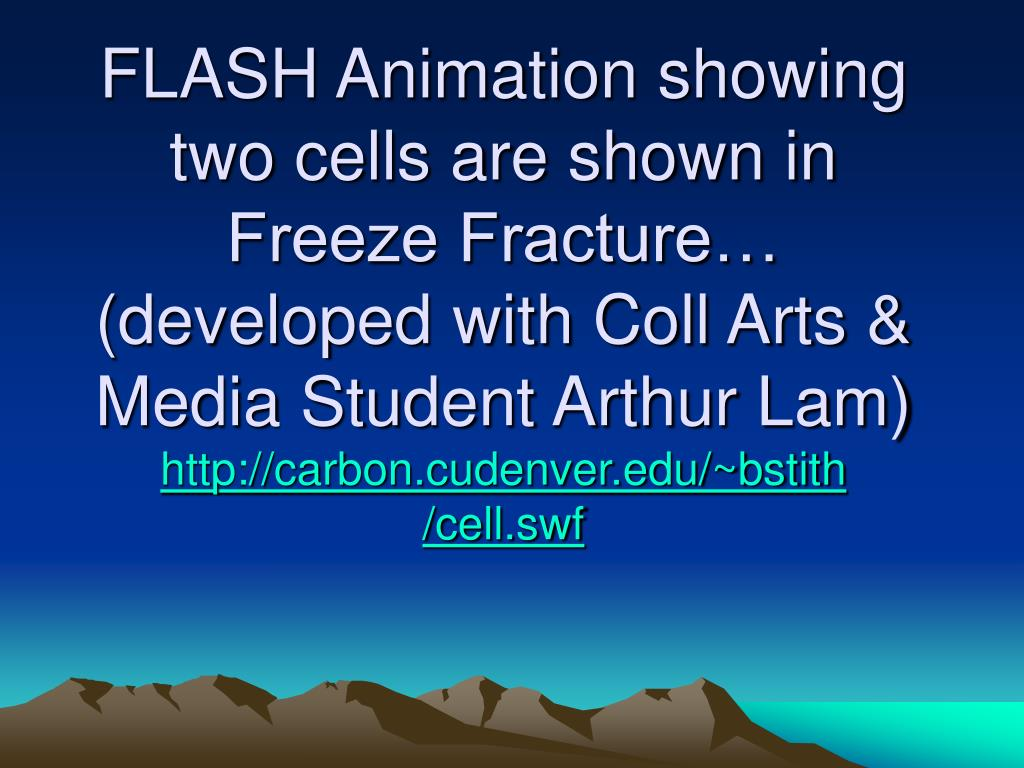 FLASH Animation showing two cells are shown in Freeze Fracture…