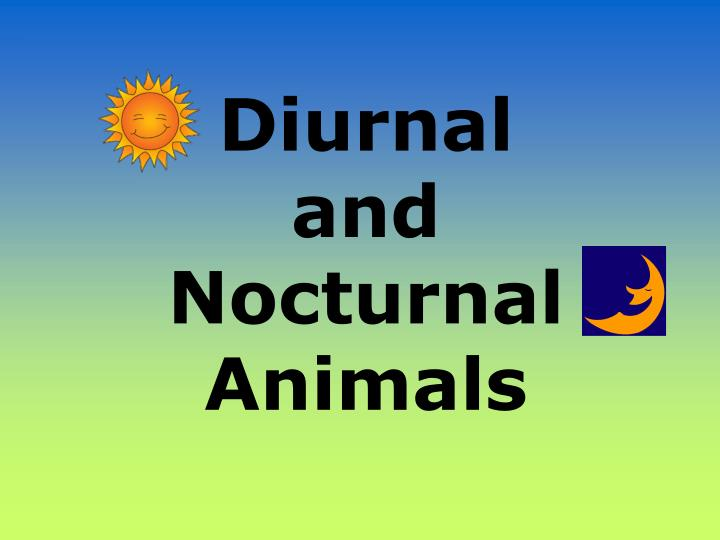 diurnal and nocturnal animals n.