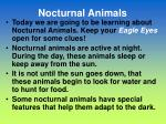 nocturnal animals1