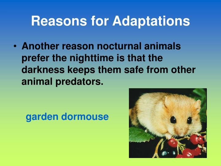 Reasons for Adaptations