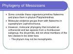 phylogeny of mesozoans