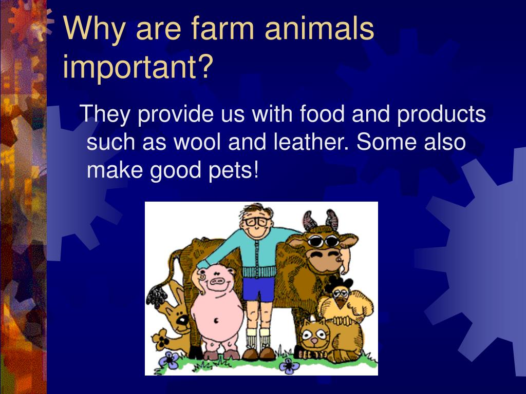 Why are farm animals important?