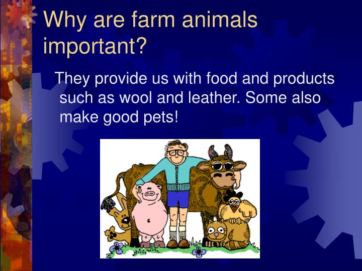Why are farm animals important