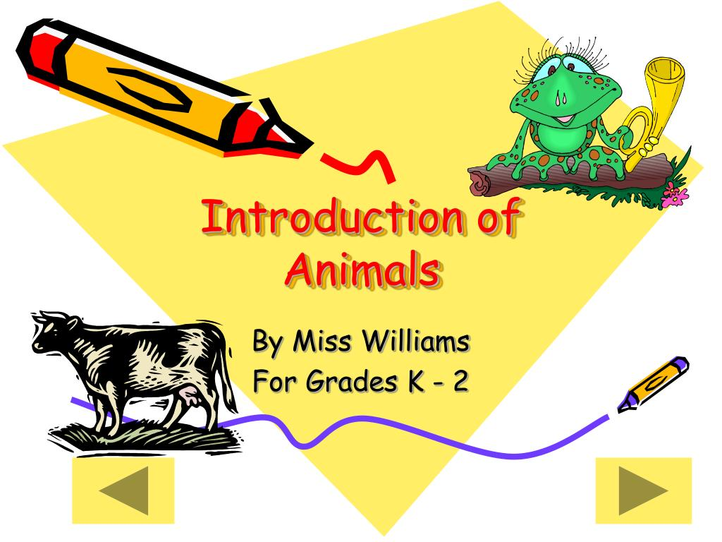 introduction of animals l.