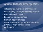 animal disease emergencies
