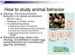 how to study animal behavior
