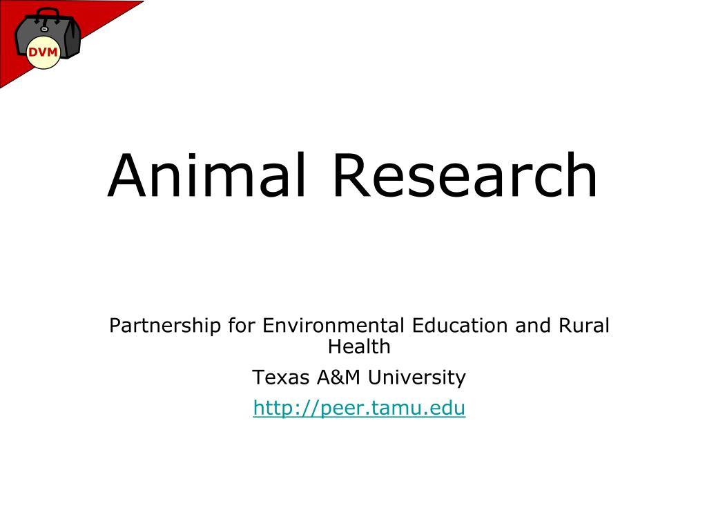 animal research l.