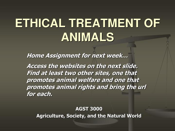 ethical treatment of animals n.