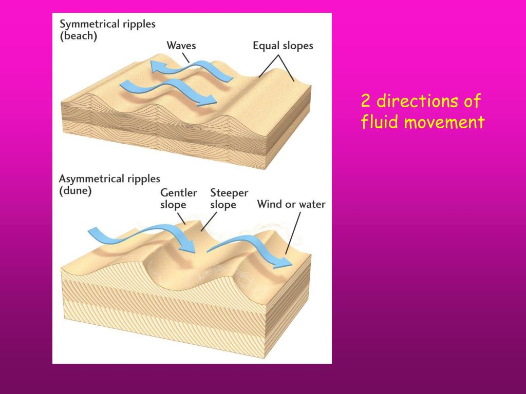 2 directions of fluid movement