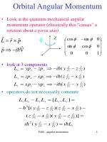 orbital angular momentum2