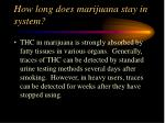 how long does marijuana stay in system