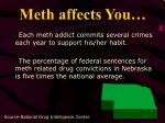 meth affects you