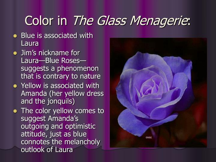symbolism in glass menagerie The glass menagerie uses an extensive pattern of symbolism that describes the characters of tom,amanda,laura and jimglass,light,color and music constitute the substance of the dominant symbols and motifs,serving to reveal deeper aspects of characters and underlying themes of the.
