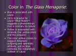 color in the glass menagerie