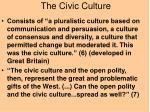 the civic culture13