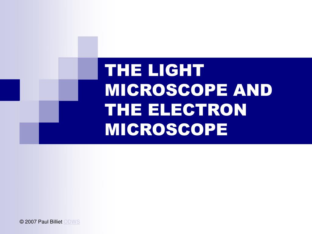 the light microscope and the electron microscope l.