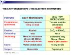 the light microscope v the electron microscope8
