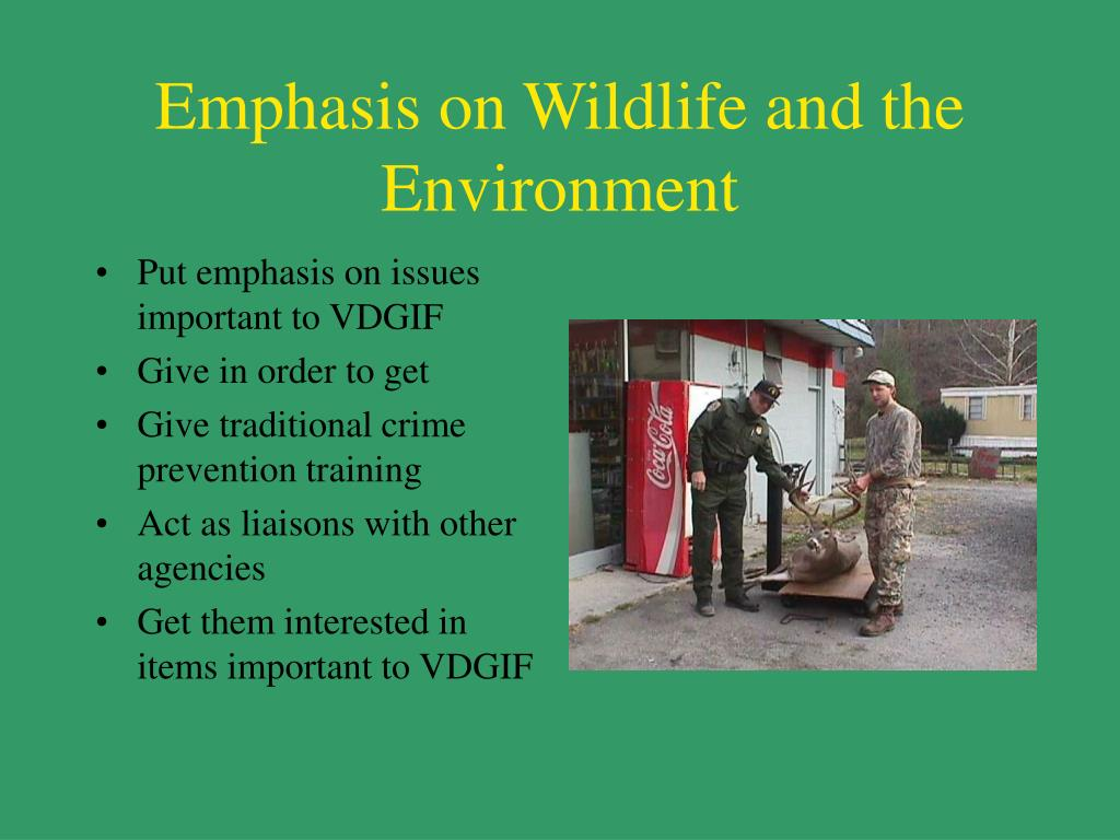 Emphasis on Wildlife and the Environment