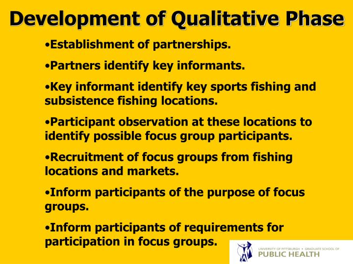Development of Qualitative Phase
