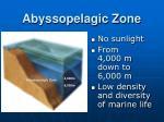 abyssopelagic zone