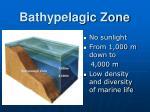 bathypelagic zone