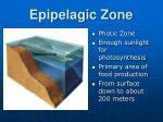 epipelagic zone