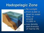 hadopelagic zone