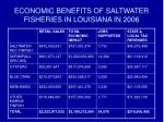 economic benefits of saltwater fisheries in louisiana in 2006