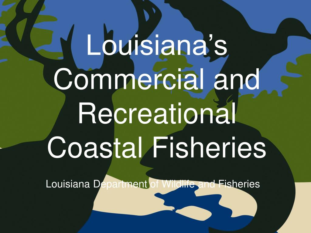 louisiana s commercial and recreational coastal fisheries l.