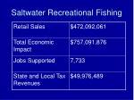 saltwater recreational fishing