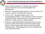 lower extremity endovascular revascularization38