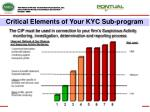 critical elements of your kyc sub program14
