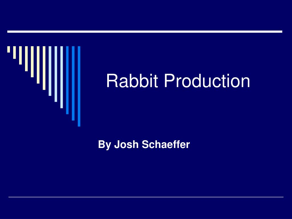 rabbit production l.