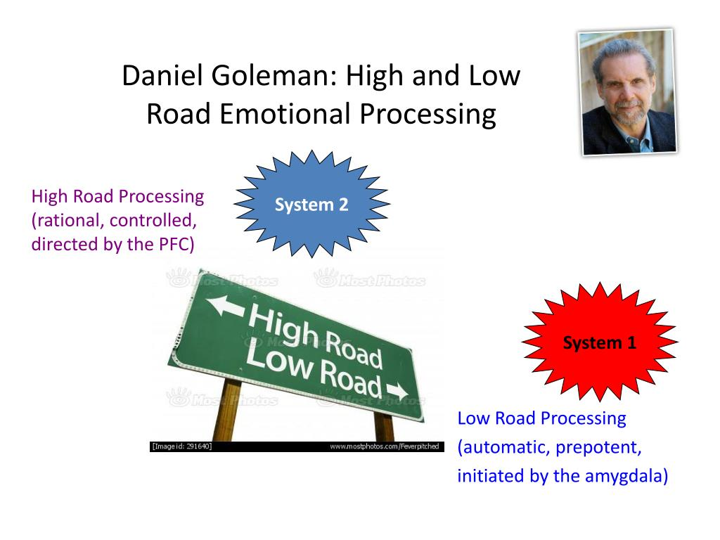 Daniel Goleman: High and Low Road Emotional Processing