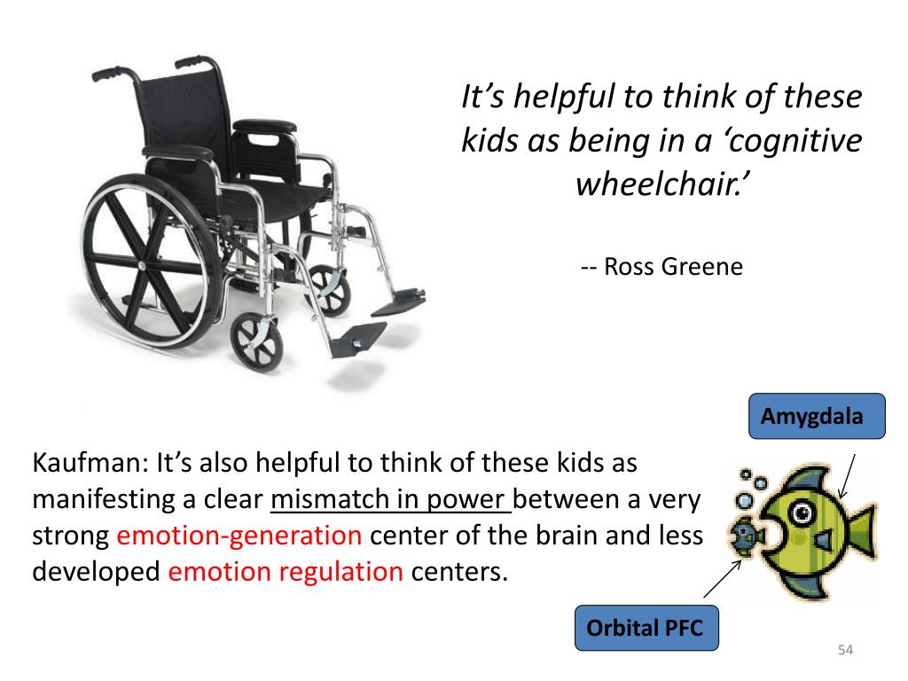 It's helpful to think of these kids as being in a 'cognitive wheelchair.'