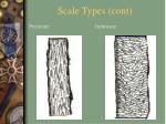 scale types cont