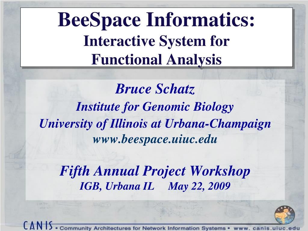 beespace informatics interactive system for functional analysis l.
