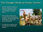 the cheaper route for kudzu control