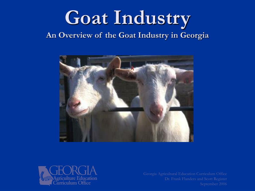 goat industry an overview of the goat industry in georgia l.