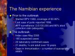 the namibian experience