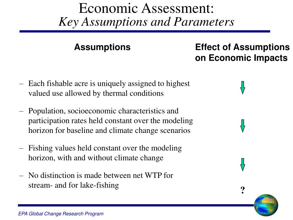 Economic Assessment: