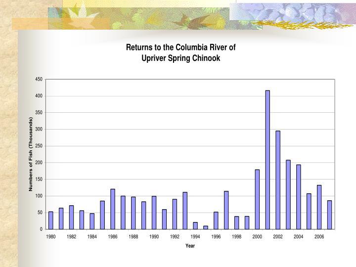 Columbia river salmon and steelhead returns and 2007 fisheries