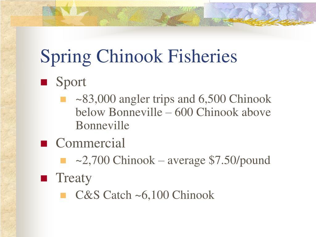 Spring Chinook Fisheries