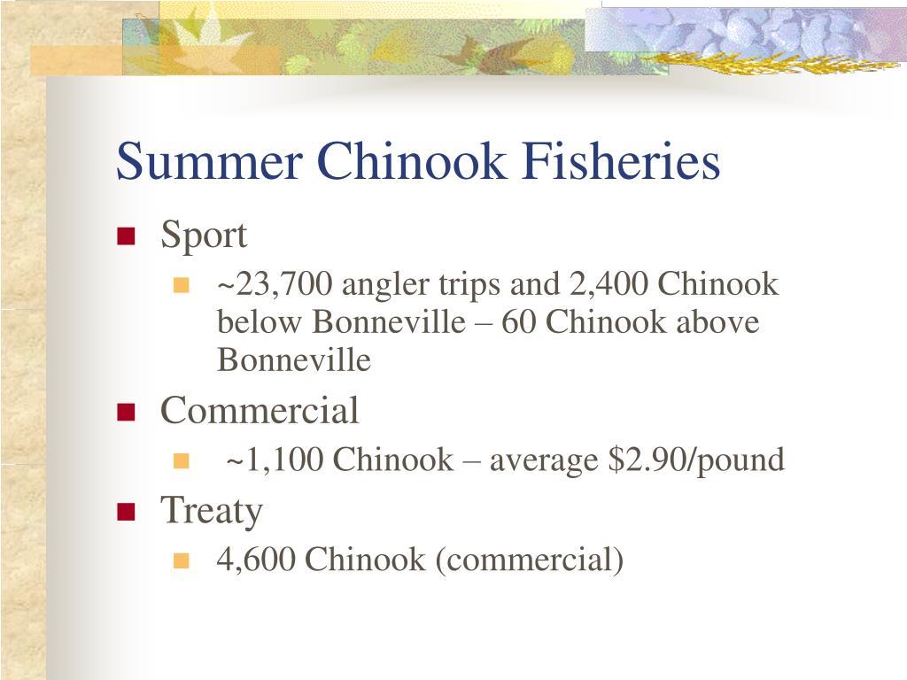 Summer Chinook Fisheries