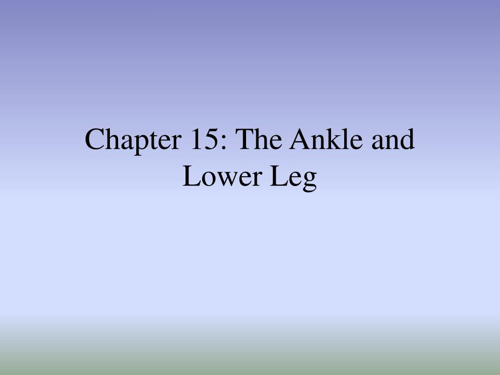 chapter 15 the ankle and lower leg l.