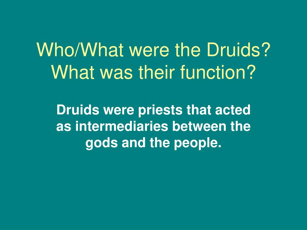 Who/What were the Druids? What was their function?