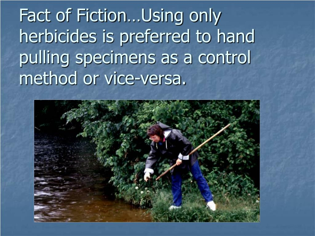 Fact of Fiction…Using only herbicides is preferred to hand pulling specimens as a control method or vice-versa.