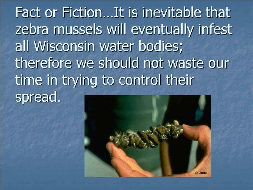 Fact or Fiction…It is inevitable that zebra mussels will eventually infest all Wisconsin water bodies; therefore we should not waste our time in trying to control their spread.