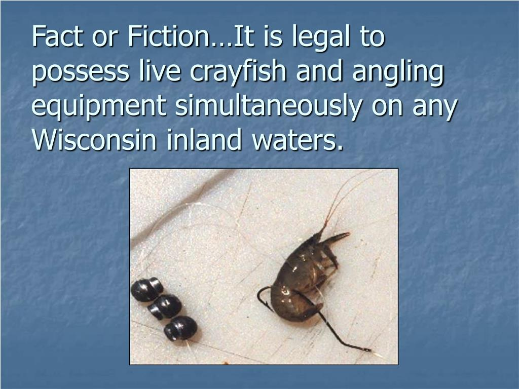 Fact or Fiction…It is legal to possess live crayfish and angling equipment simultaneously on any Wisconsin inland waters.